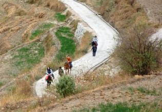 49 Pony Trekking 2